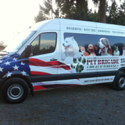 pic of Pet Brigade pet transport van