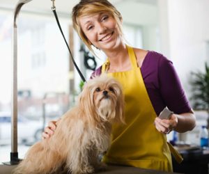 pic of woman grooming a dog